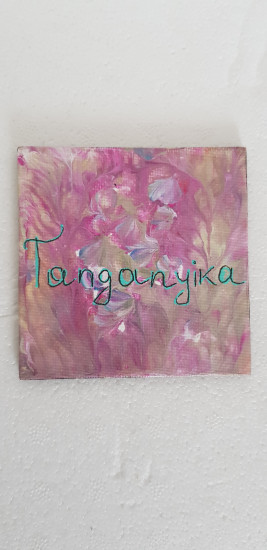 Magnet Tanganyika région Congo-Rdc