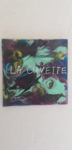 Magnet La Cuvette région Congo-Brazzaville
